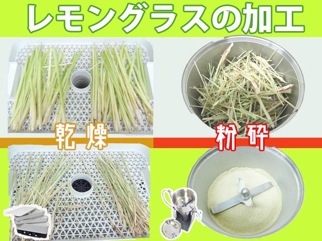[ハーブの加工] レモングラスの乾燥~粉末化