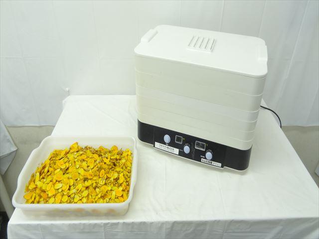 食品乾燥機でウコンの乾燥